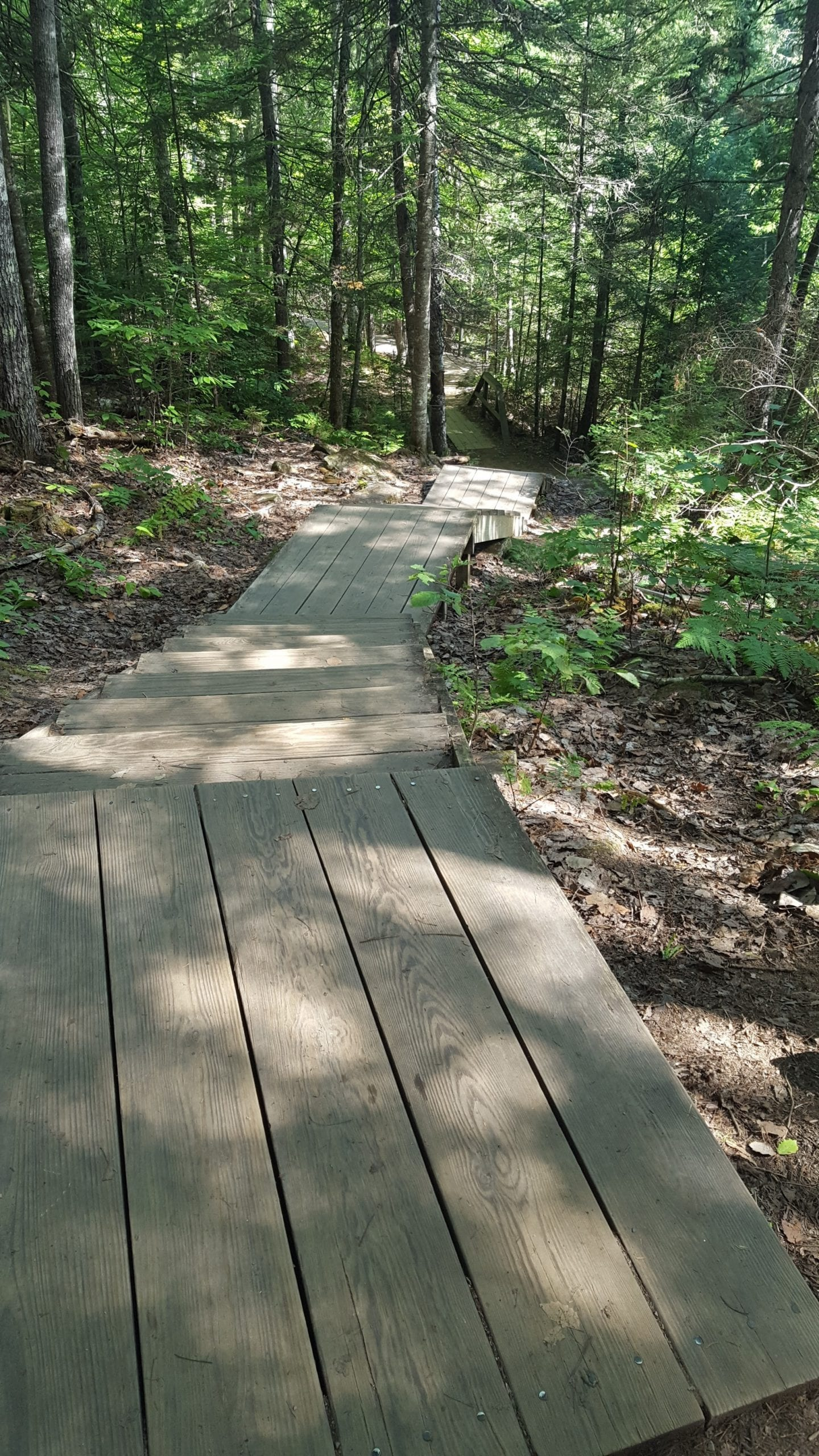There are several boardwalks and sets of wooden stairs on the way to Moxie Falls.